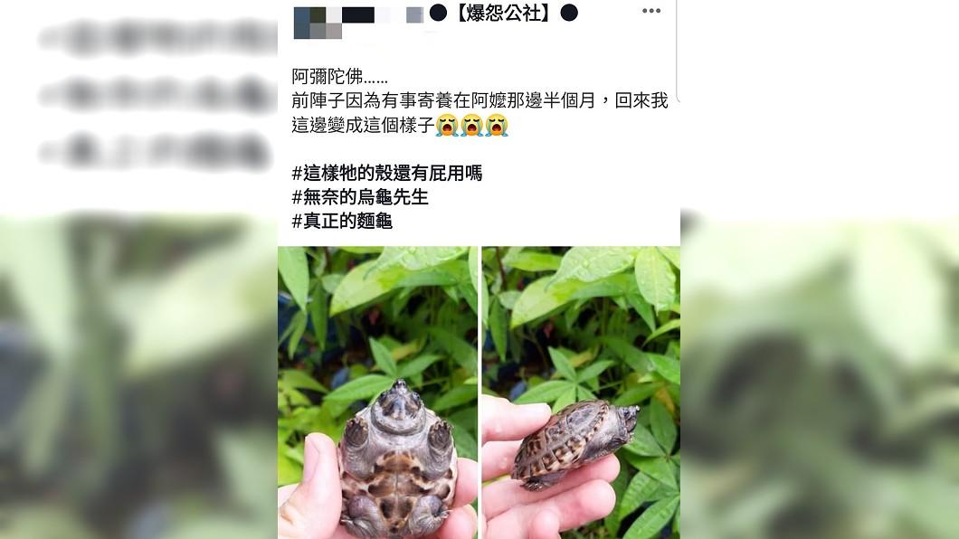 原PO無奈地說「變成麵龜了」。圖/翻攝自爆怨公社