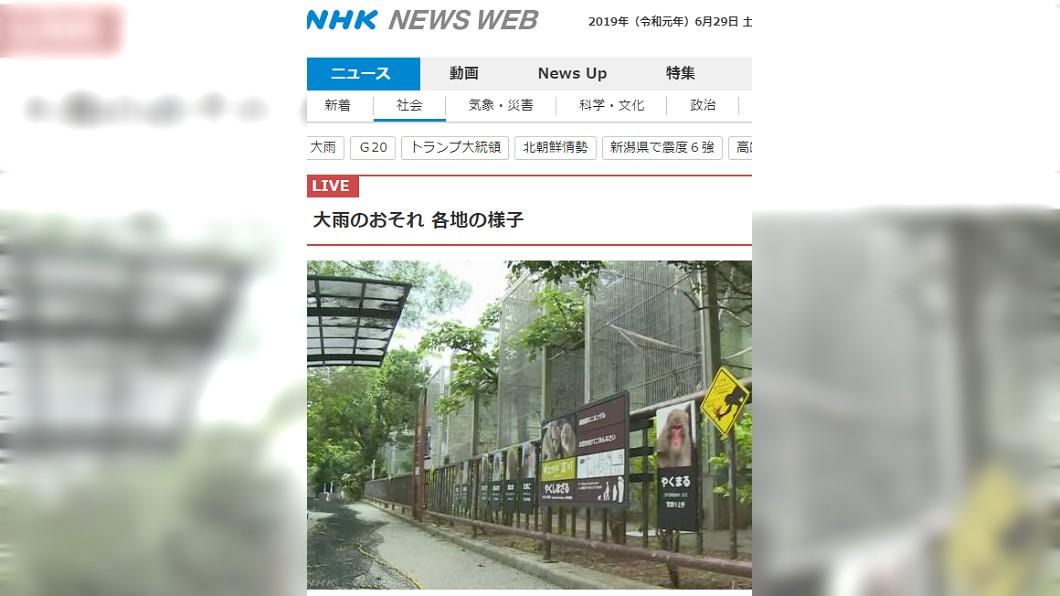 沖繩世界兒童王國動物園。圖/截自NHK news  猴子大逃脫! 動物園14隻猴自己拿鑰匙開門翹家