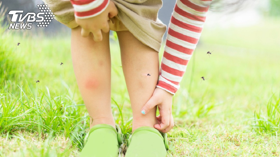 孩子夏天易遭叮咬,父母要特別留意。示意圖/TVBS