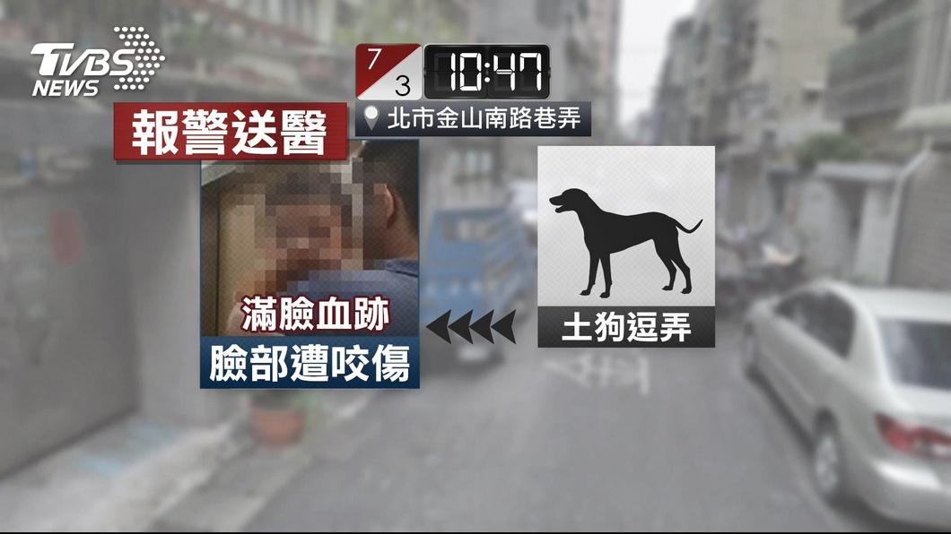 圖/TVBS 巷弄傳娃哭聲 7月大男嬰遭狗啃「滿臉血」