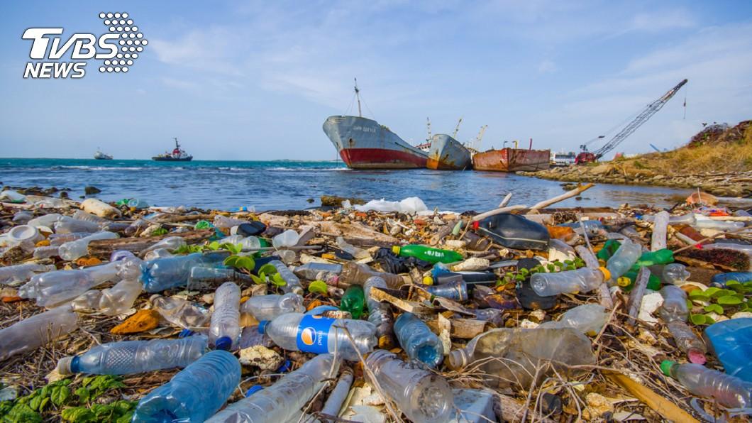 海岸遭嚴重汙染 。示意圖/TVBS 「地球上最常見垃圾」幼鳥叼菸蒂 吃下穩死!