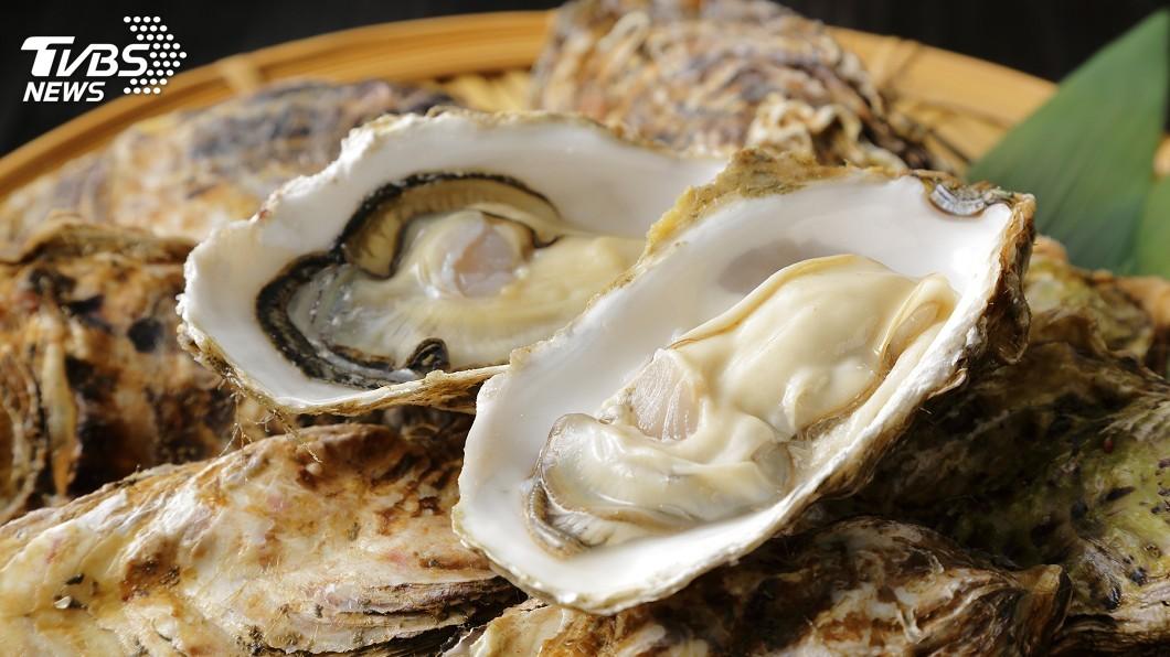 示意圖/TVBS 至少活了30年! 巨無霸牡蠣重達1.3公斤