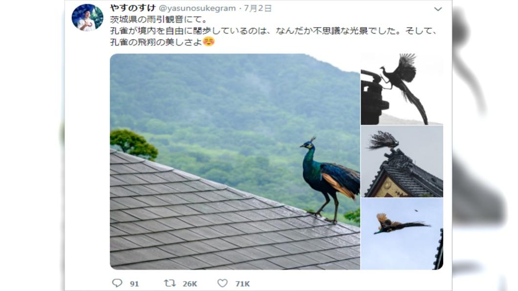 圖/翻攝推特@yasunosukegram