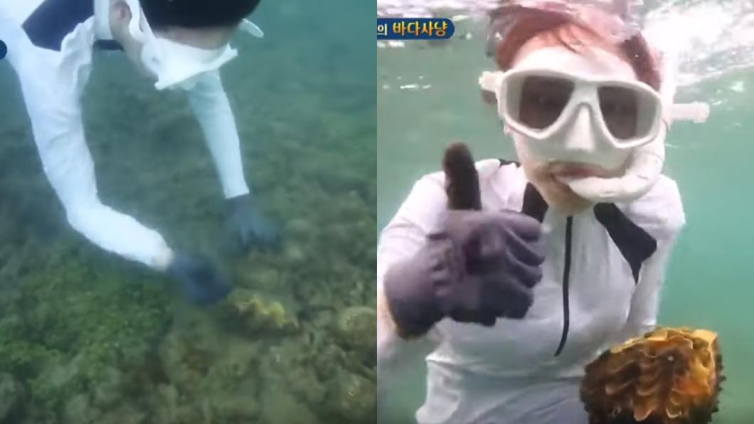 「叢林的法則」節目片段。圖/翻攝自YouTube 泰潛水猛拔巨蚌!女星嗨喊「抓到了!」 恐面臨5年徒刑