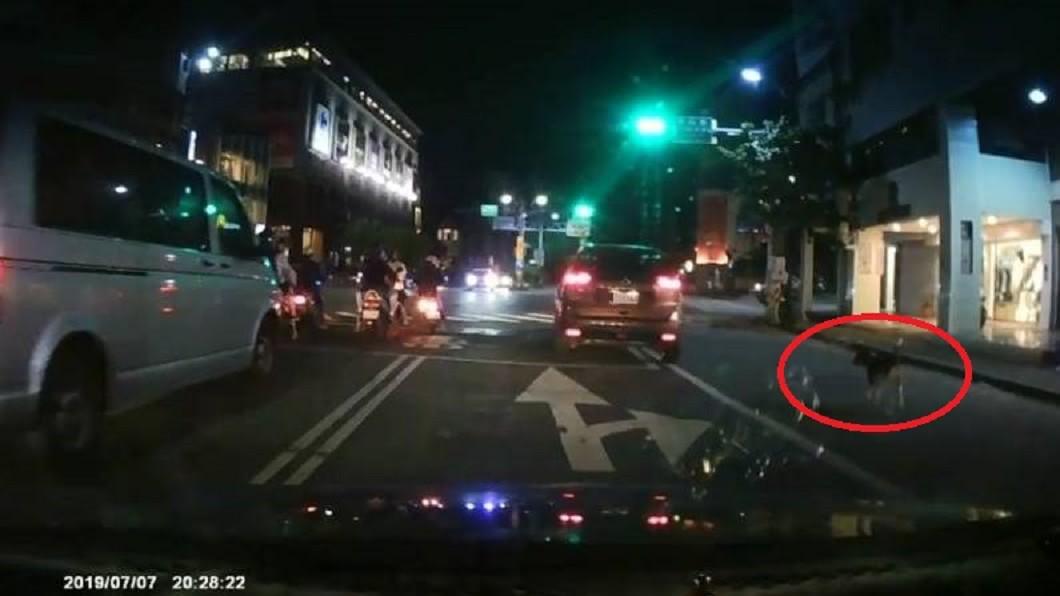 狗狗緊跟車子,但最終還是沒有追上,只能看著車子無情的揚長而去。圖/翻攝宜蘭知識+臉書
