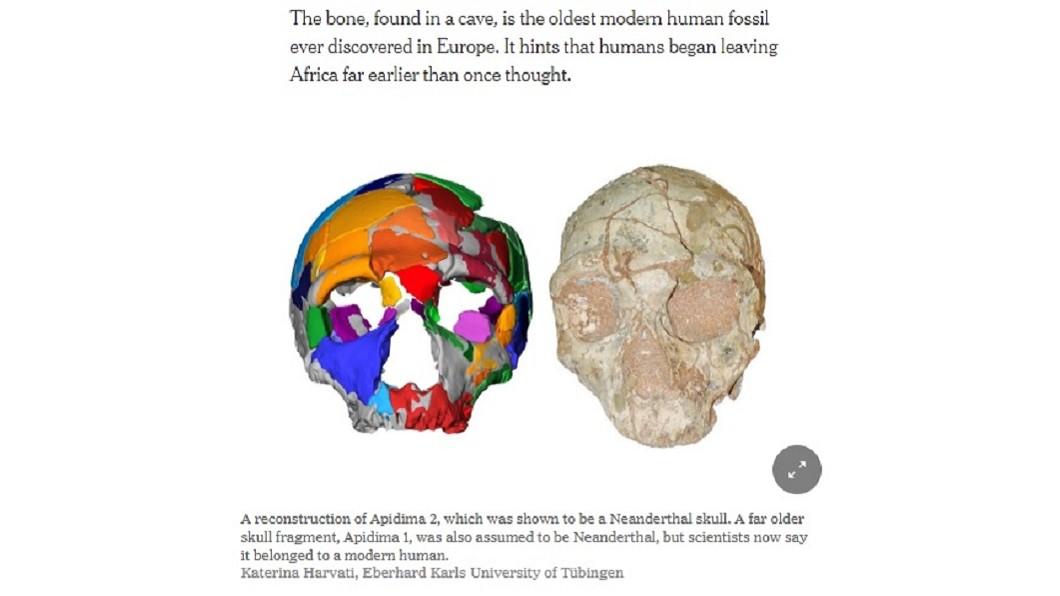 圖/翻攝自The New York Times 21萬年歷史頭骨 證明人類早15萬年遠離非洲