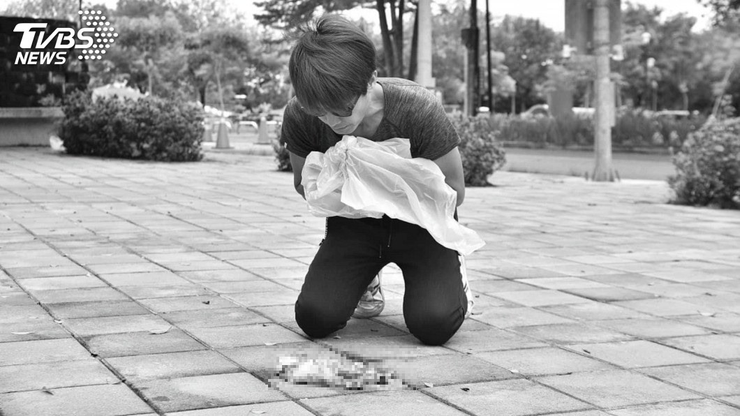 圖/嘉義市動物守護協會 授權提供 幼貓遭殺害「四肢不見、頭顱開洞」 棄屍公園顯眼處