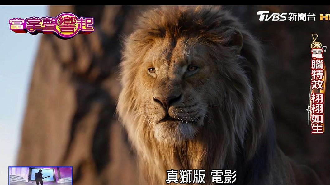 圖/TVBS 「獅子王」再現! 真獅版電腦特效神還原