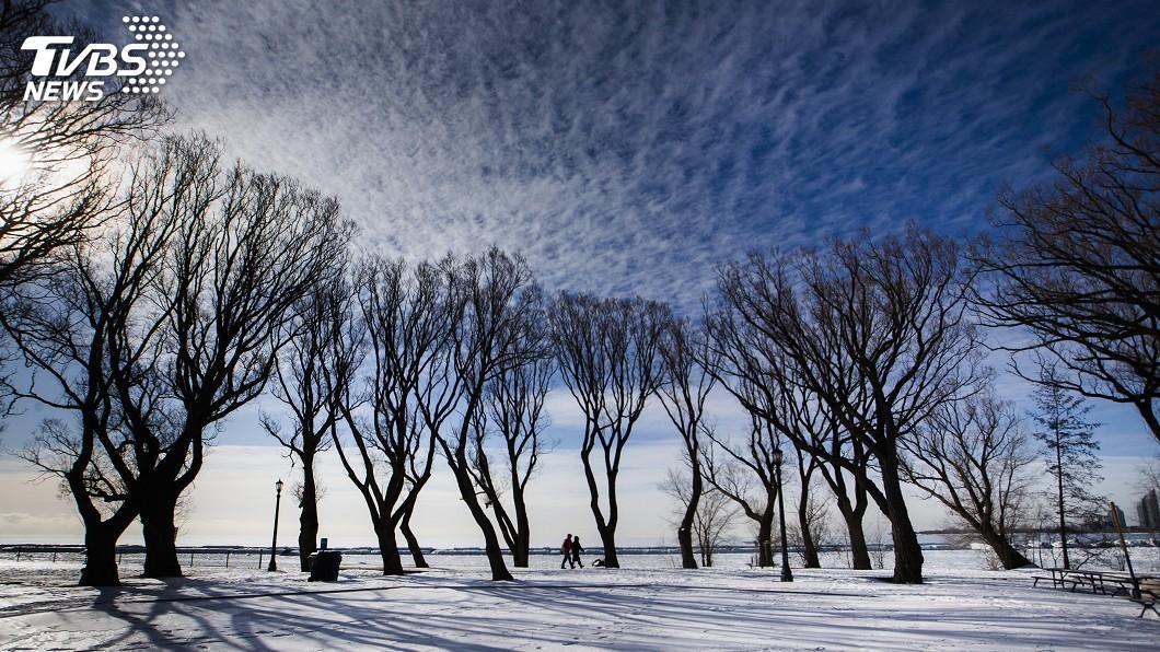 圖/達志影像路透社 北極熱浪襲地球最北定居點 攝氏21度破紀錄