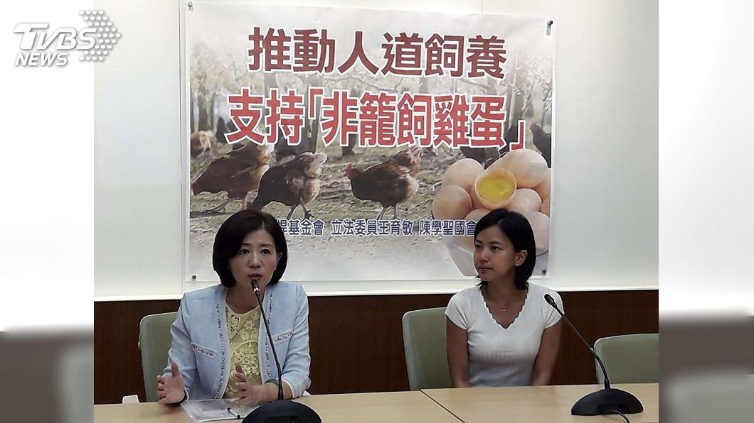 圖/中央社 保障食安與動物權益 立委結合民團推非籠飼雞蛋