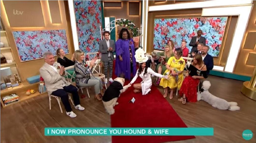 女模和愛犬在節目上完成婚禮。(圖/翻攝自YouTube)