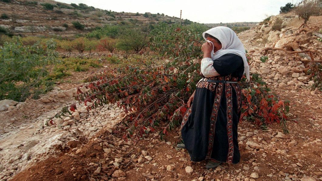 示意圖/達志影像美聯社 「以色列製」商品來自屯墾區 加拿大:誤導民眾!