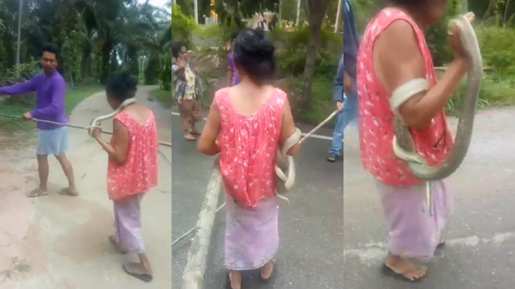 村民們協力用大樹枝引導蛇醫回家。圖/翻攝自วรวุฒิ เชิงไกรยัง臉書