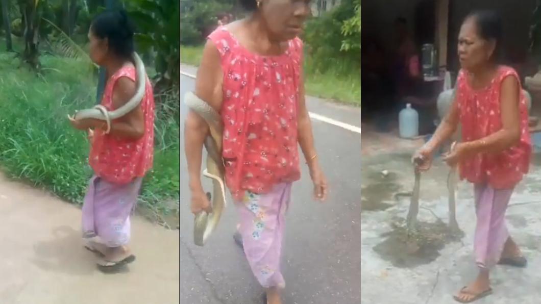 妮蛇醫回家後就把毒蛇丟在地上。圖/翻攝自วรวุฒิ เชิงไกรยัง臉書