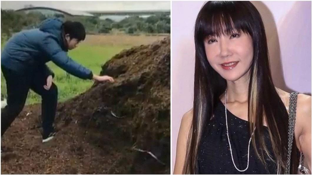 女星金瑞瑤的兒子研究馬糞變肥料。合成圖/中華華夏關懷基金會授權使用、資料照 玉女歌手帶兒子騎馬 他竟對「路邊馬糞」感興趣