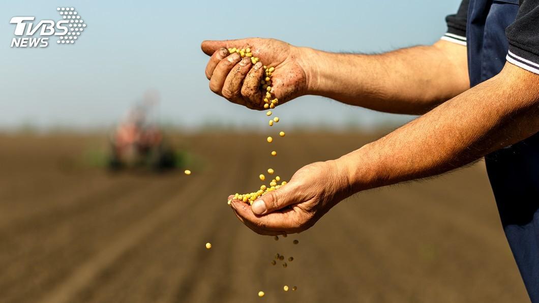 示意圖/TVBS 中國停買美農產品 川普承諾協助農民以固票倉