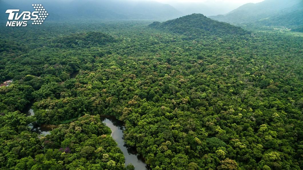 示意圖/TVBS 德砍亞馬遜保育經費 巴西總統嗆:我們不需金援
