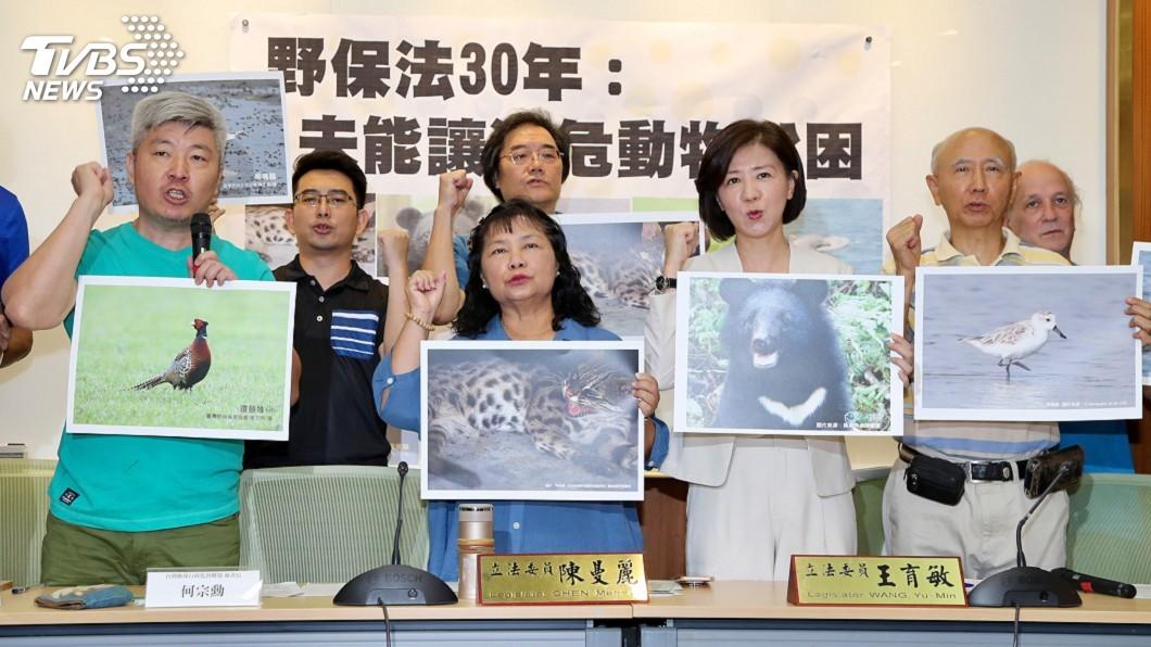 圖/中央社 野保法30年瀕危動物未脫困 動保團體促修法
