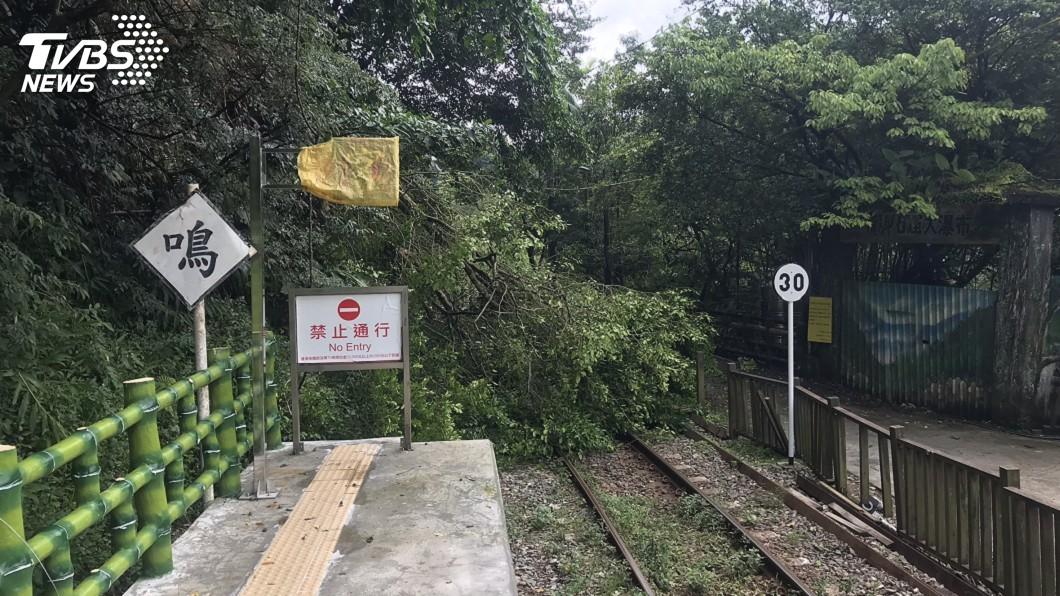 圖/中央社 路樹傾倒 台鐵平溪線部分路段無法通行