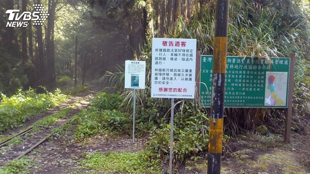 圖/中央社 阿里山林鐵眠月線封閉多年 發生3起失足事故
