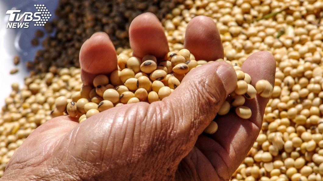 示意圖/TVBS 美中貿易戰對決農產品 巴西大豆成新寵