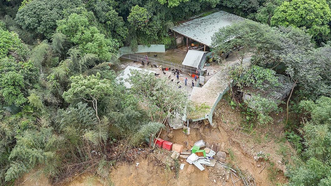 圖/台灣動物緊急救援小組提供 連日大雨土石流沖毀狗園 網路集資盼渡難關