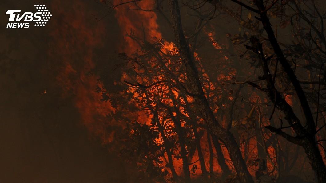 圖/達志影像美聯社 巴西森林火災加劇 總統無理牽拖NGO可能放火