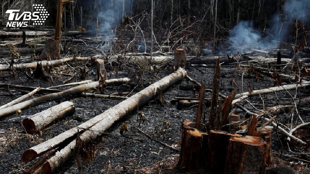 圖/達志影像路透社 亞馬遜雨林野火黑煙蔽日 聖保羅白晝如夜