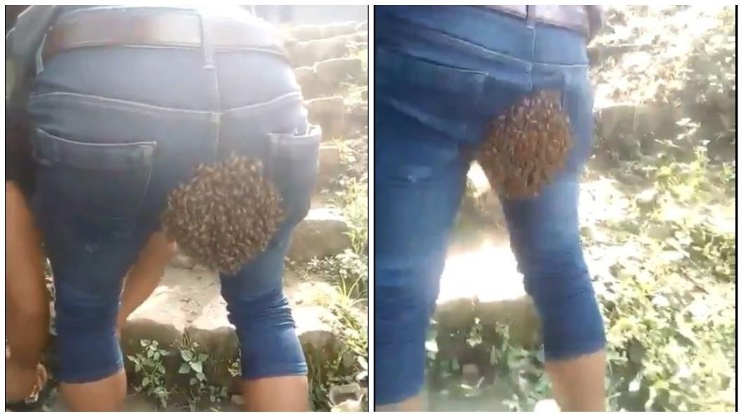 男子的翹臀被女王蜂看上,吸引蜂群來築巢。(圖/翻攝自推特) 男子翹臀被看上 女王蜂停駐引蜂群築巢