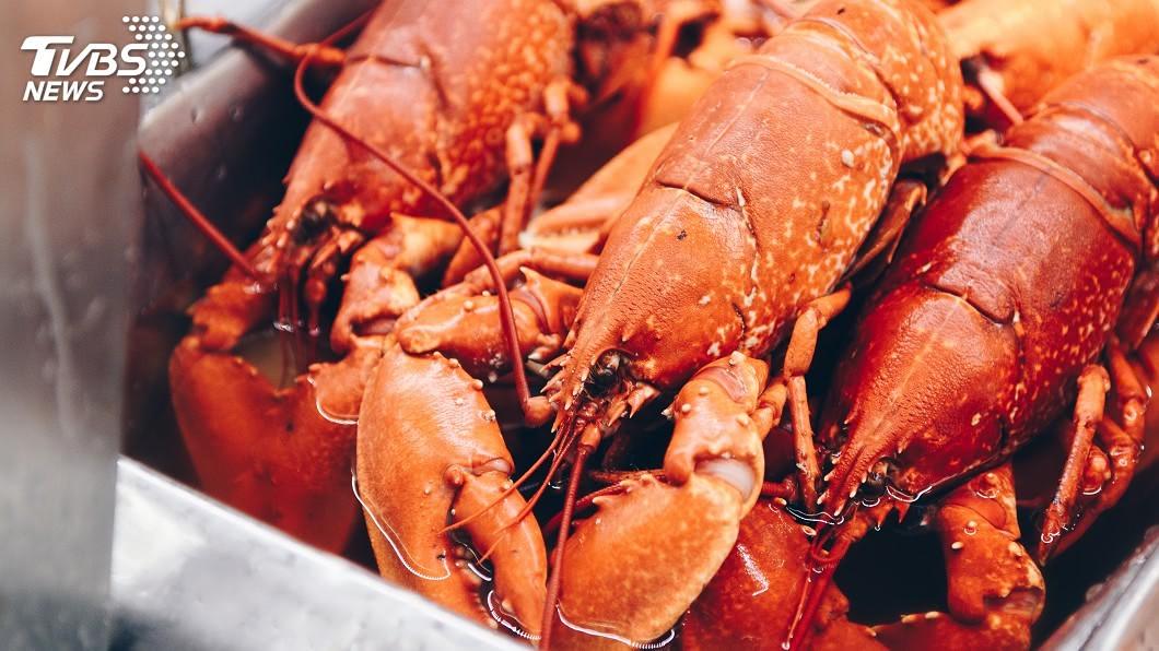 示意圖/TVBS 貿易戰重傷美龍蝦業者 加拿大漁翁得利