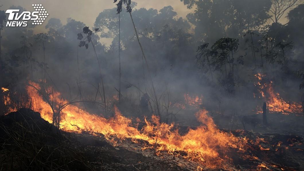 圖/達志影像美聯社 拯救亞馬遜雨林 馬克洪:G7各國將砸7億助滅火
