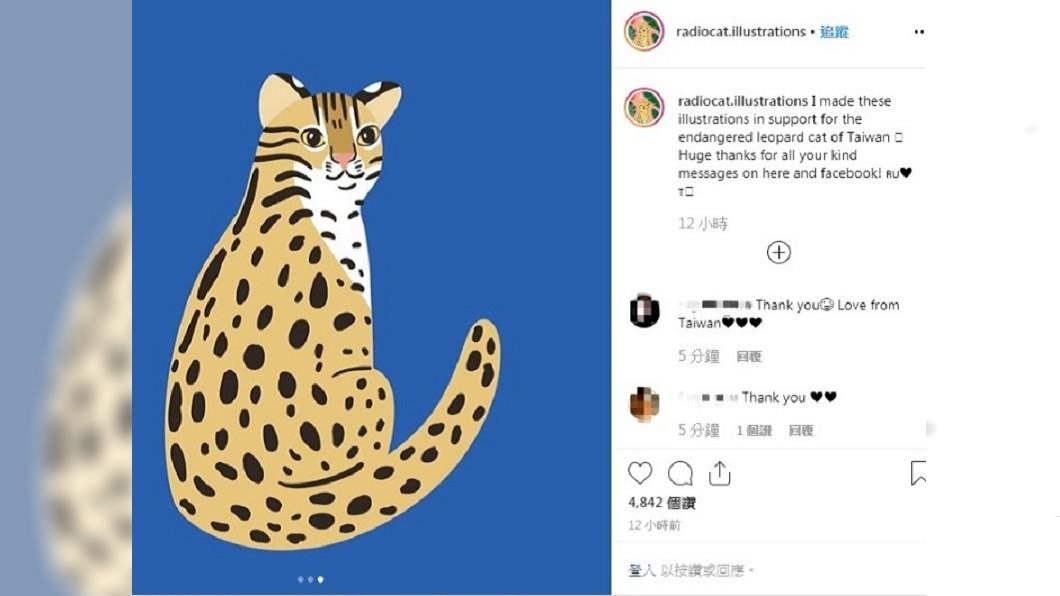 圖/翻攝自Katya Molodtsova Instagram 俄插畫家免費繪3張石虎圖 林佳龍感謝邀訪台