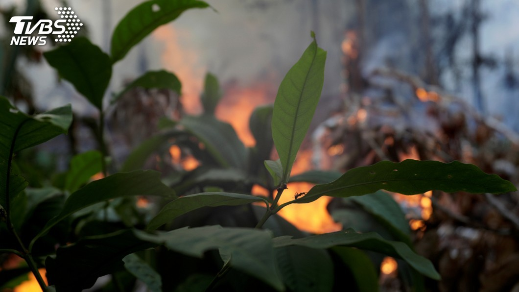 圖/達志影像路透社 亞馬遜雨林火燒不停 秘魯哥倫比亞擬開緊急峰會