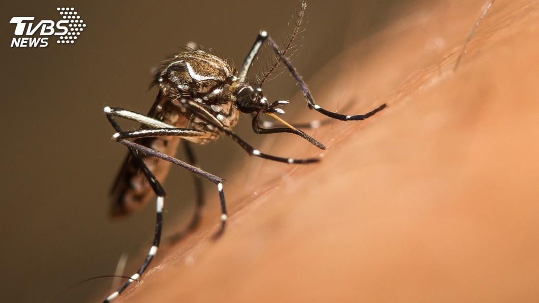 示意圖/TVBS 今年首例境外移入茲卡病毒 北部男性泰國旅遊確診