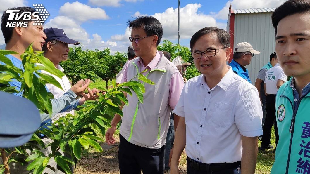 圖/中央社 颱風重創台東農業 陳吉仲鼓勵農民加農業保險