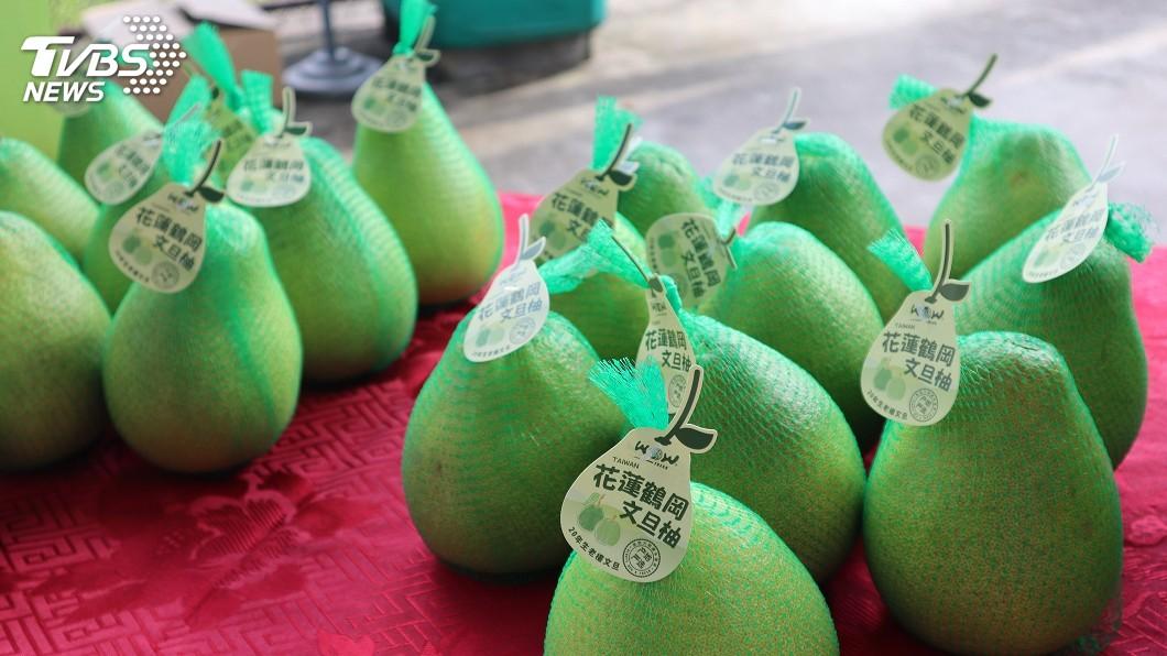 圖/中央社 花蓮文旦柚外銷上海 首批裝櫃將銷百餘公噸
