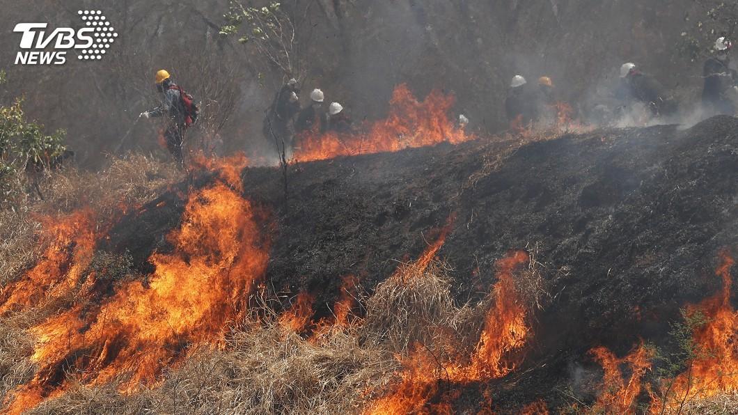 圖/達志影像美聯社 亞馬遜雨林高峰會 巴西總統準備開刀將缺席