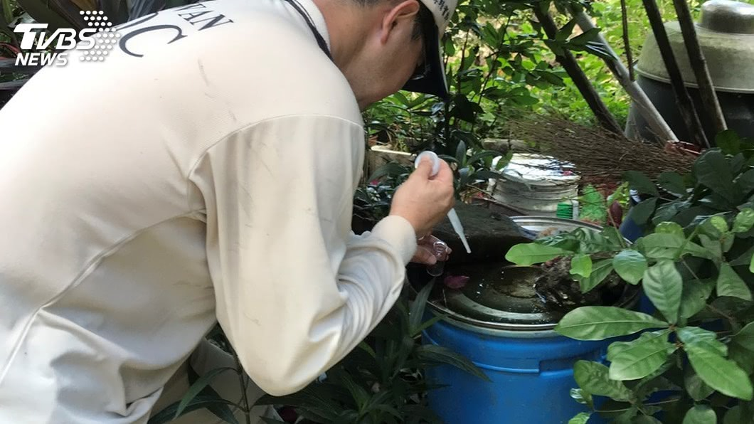 圖/中央社資料畫面 新北已6起屈公病例 環保署籲民眾清除孳生源