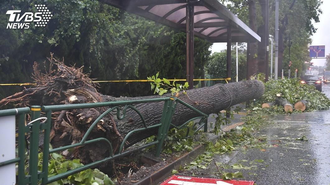 圖/達志影像美聯社 日本關東最強颱風法西登陸 已知1死、逾20傷