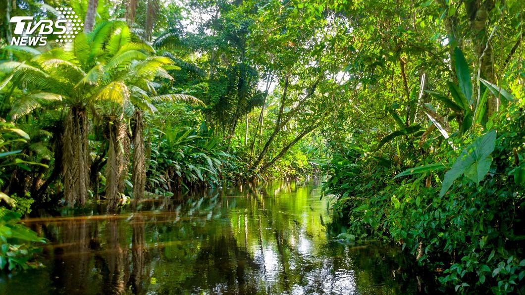 示意圖/TVBS 巴西亞馬遜發展經濟 專家提議生態旅遊有效
