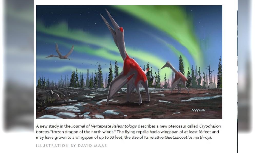 圖/翻攝自National Geographic 30多年前出土化石 科學家證實為「新品種翼龍」