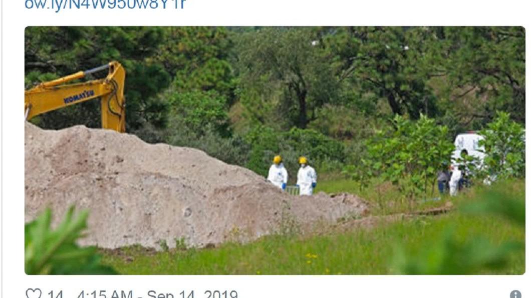 當地政府大規模開挖。圖/翻攝Mexico News Daily 推特