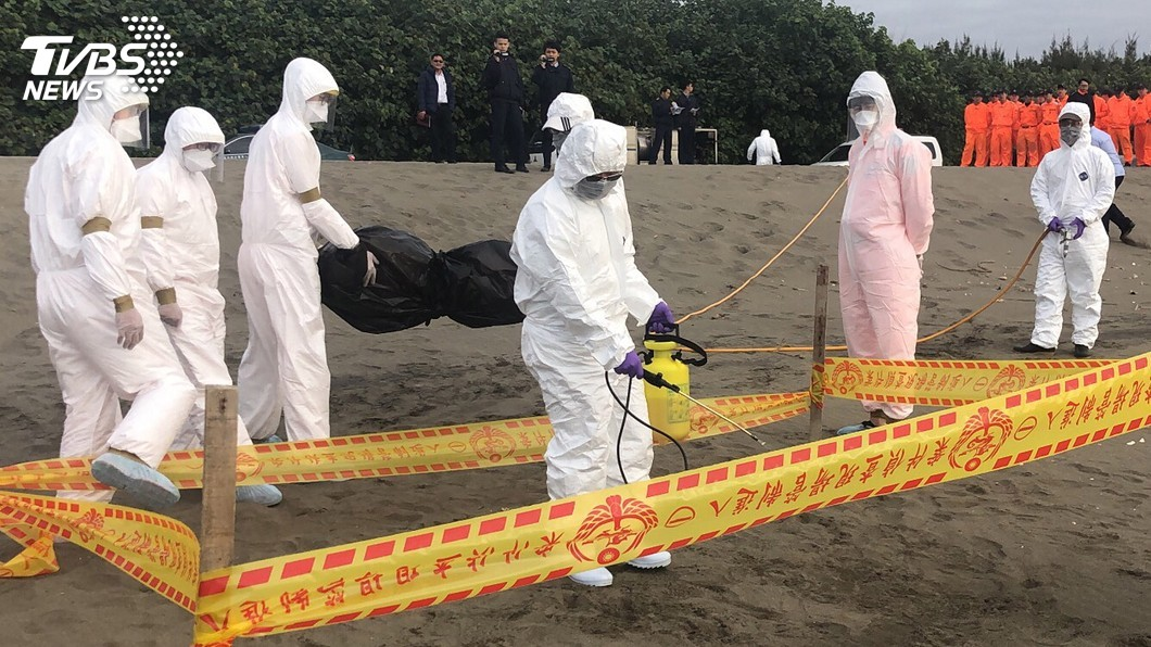 圖/海巡署北部分署第八岸巡隊提供 非洲豬瘟防疫 立院建議加強跨機關聯合演訓
