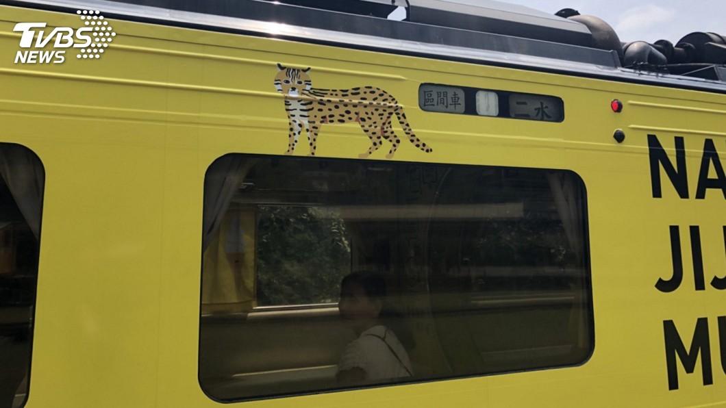 圖/日管處提供 彩繪列車正式上路 特生中心:全國都認識石虎了