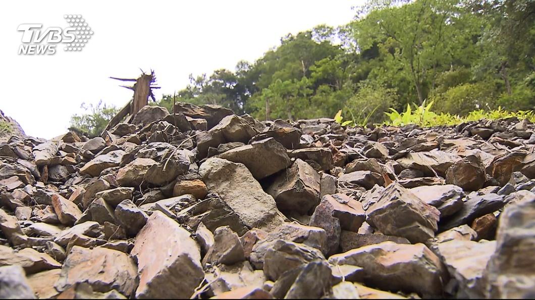 世界銀行的研究顯示,臺灣是自然災害高風險地區 【觀點】我們與921地震的距離