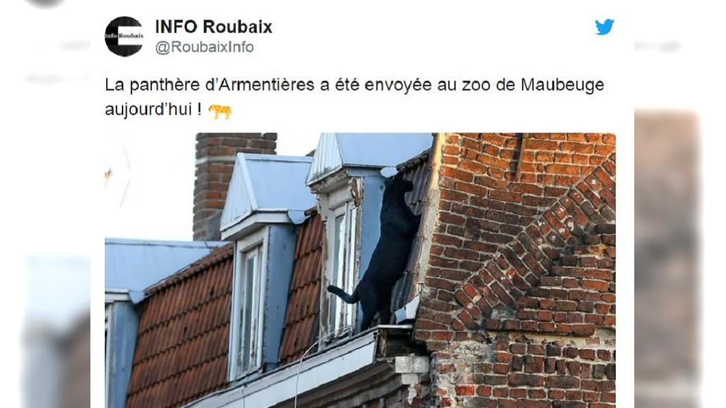 圖/翻攝自@RoubaixInfo推特
