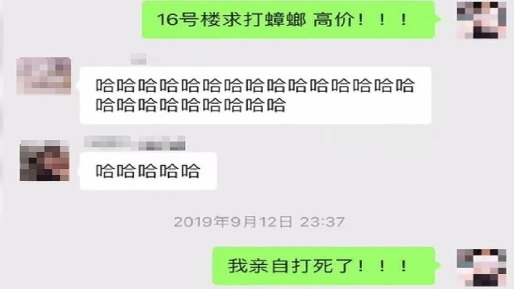有女學生在微博發出求助文,徵求勇者幫打蟑螂,但都沒人理她。(圖/翻攝自微博)