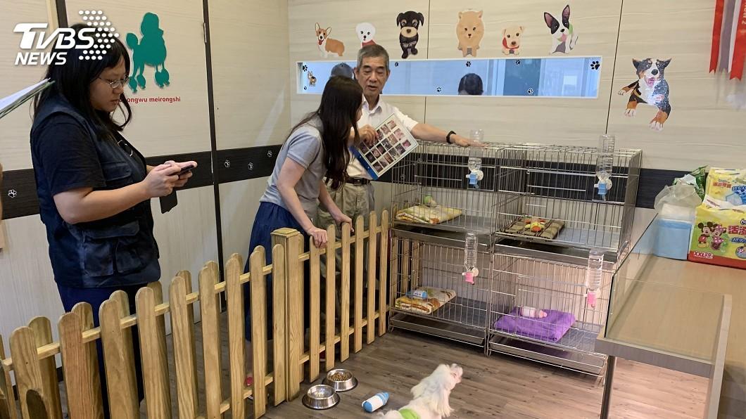 圖/基隆市動物保護防疫所提供 基隆寵物店評鑑 9家優等、1家限期改善