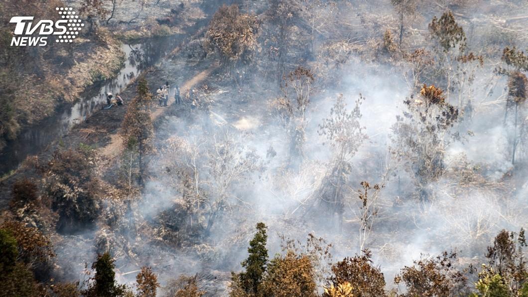 圖/達志影像美聯社 印尼雨季來臨 政府盼助撲滅森林大火