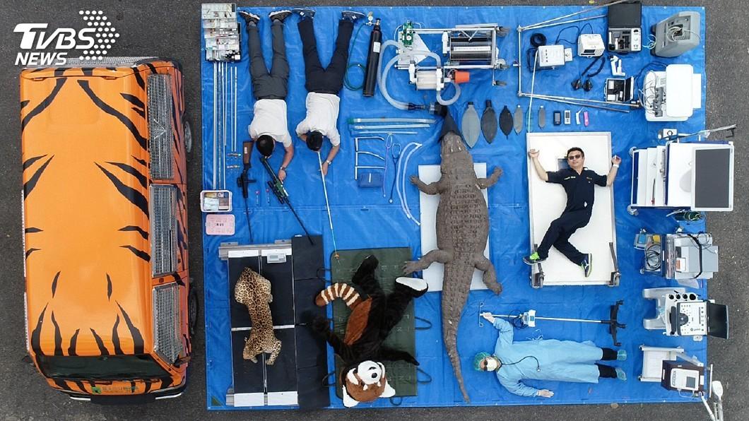 圖/台北市立動物園提供 動物園行動診療所「小虎車」 替逾2千隻動物健康把關